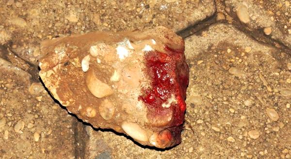 Resultado de imagem para homem é morto a pedradas