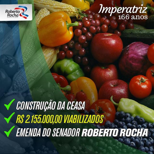Roberto Rocha 06